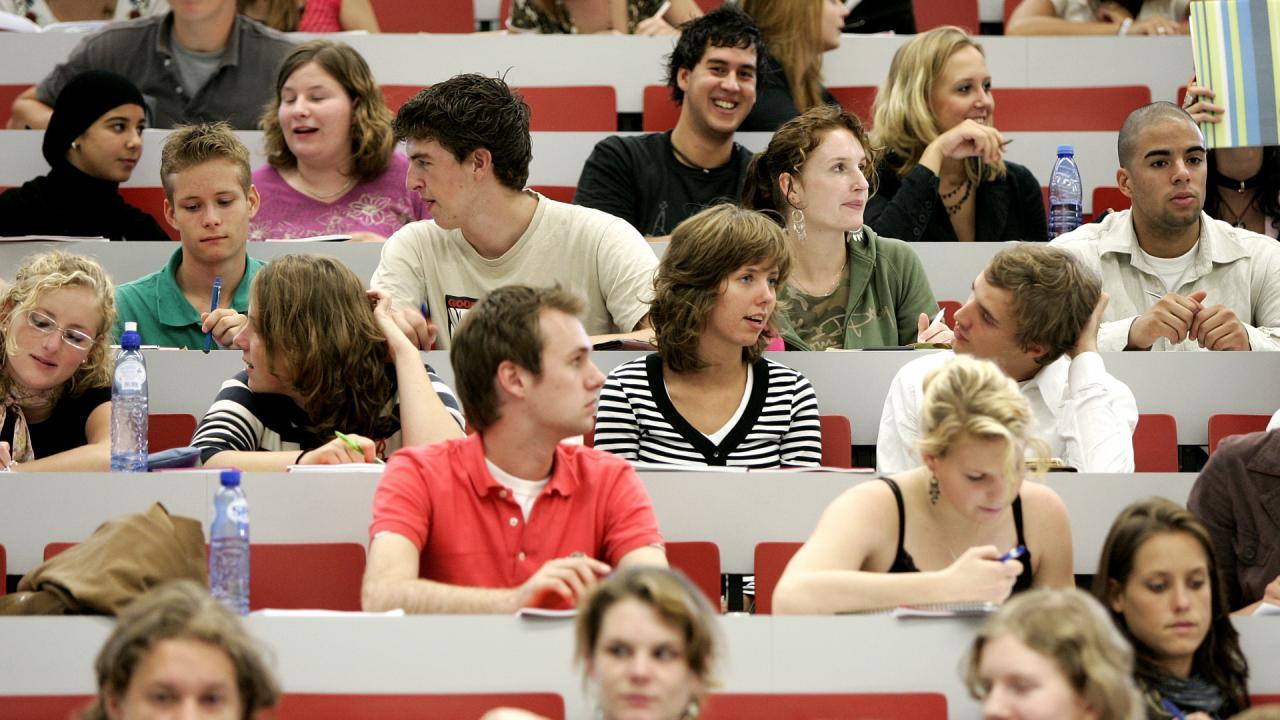 Verschil tussen een hbo en een universitaire opleiding for Opleiding hovenier hbo